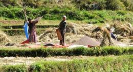 Bhutan-farmer