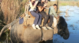 elephant-safari-chitwan-national-park