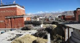 upper-mustang-houses